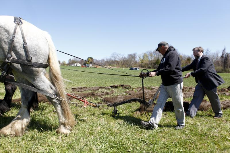 David Bradham, Business manager of Blue Star Equiculture, left, and Wesley R. Autio, Director of Stockbridge School of Agriculture use a horse-drawn hand plow, Thursday, during a groundbreaking at the site of the new UMass Agricultural Learning Center on N. Pleasant St. in Amherst.