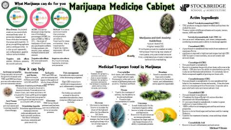 What Marijuana can do for you-3