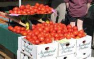 fruitharvest