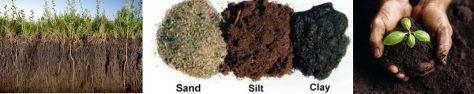 soilsbanner