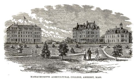 Massachusetts Agricultural College 1879