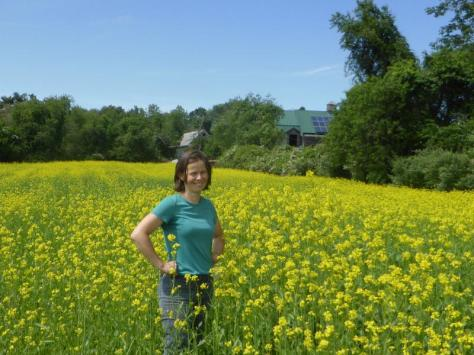 UMass Extension vegetable specialist Katie Campbell-Nelson in a mustard field at the UMass Crop Research and Education Farm in South Deerfield.