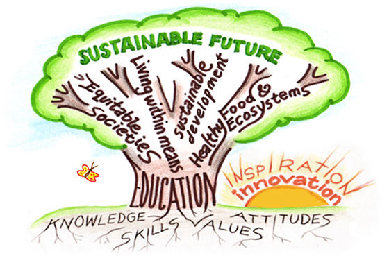 Lets talk about jobs in sustainability