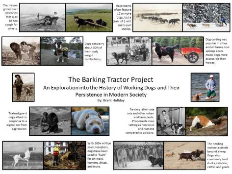 The Barking Tractor Project- Brent Holiday 2016