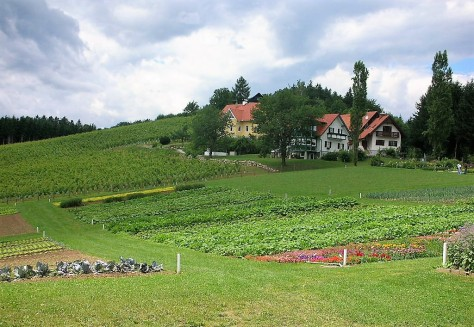Traditional polycropping in Austria