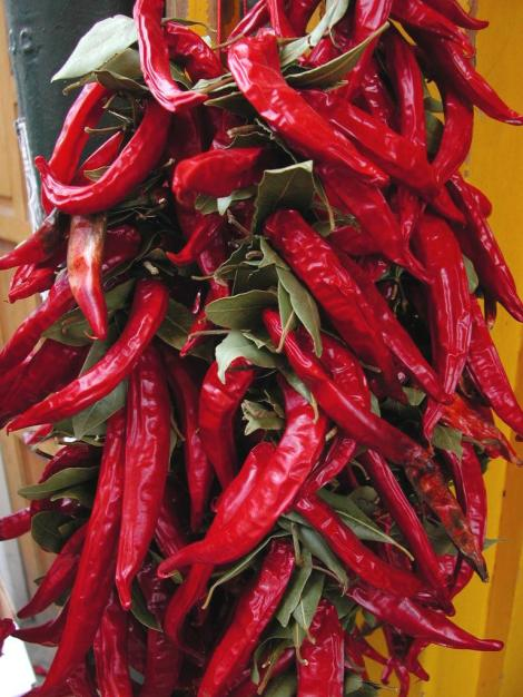Capsicum red chiles on a string