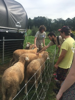 Umass Student Farmer, Kyle Zegel gives a tour to Intro to SFF class