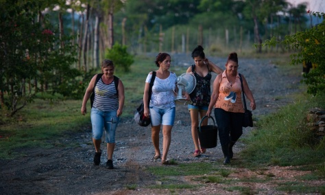 Fernando Funes Monzote, 44, of Finca Marta, a 20-acre organic farm